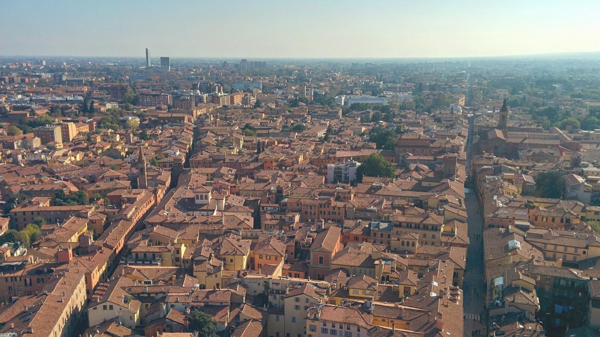 Da Zero a SEO a Bologna